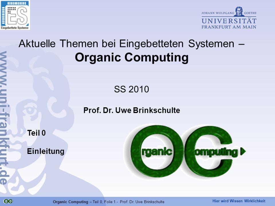 Prof. Dr. Uwe Brinkschulte