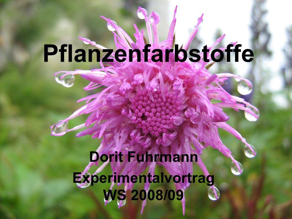 Dorit Fuhrmann Experimentalvortrag WS 2008/09