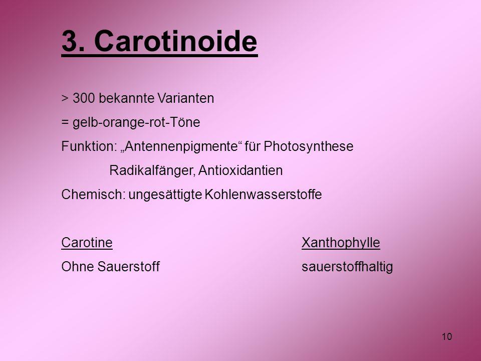 3. Carotinoide > 300 bekannte Varianten = gelb-orange-rot-Töne