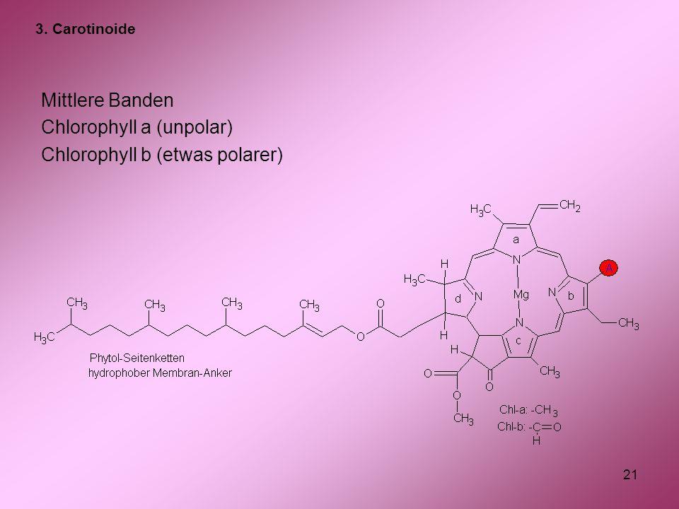 Chlorophyll a (unpolar) Chlorophyll b (etwas polarer)
