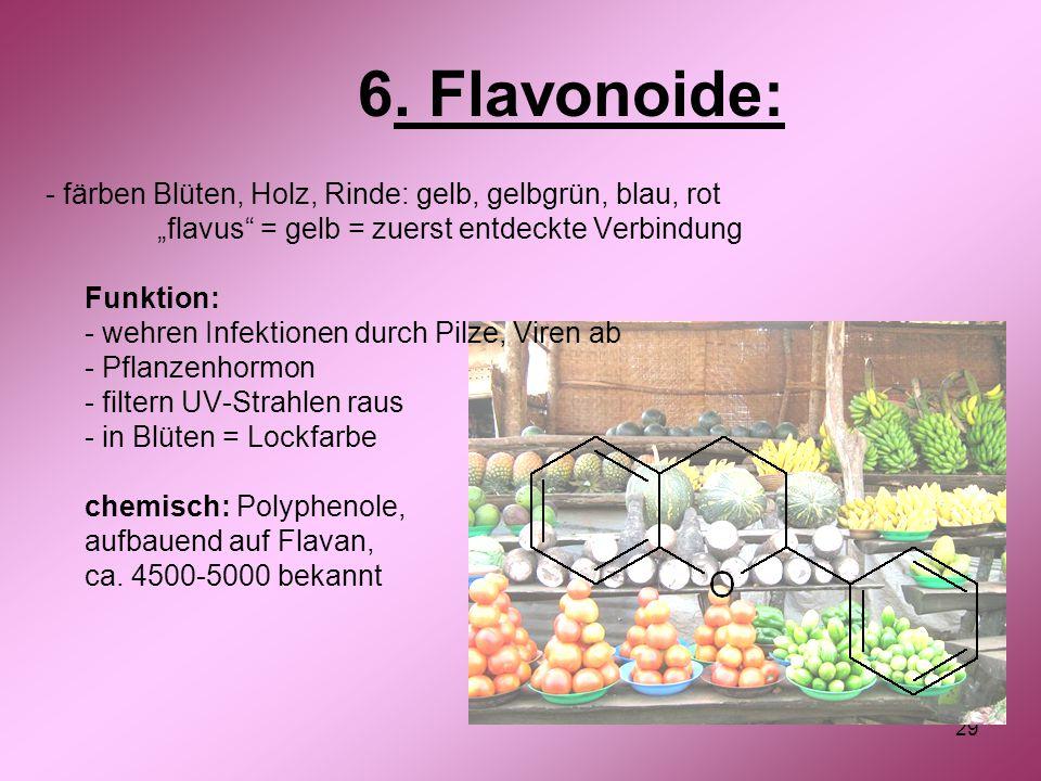 6. Flavonoide: