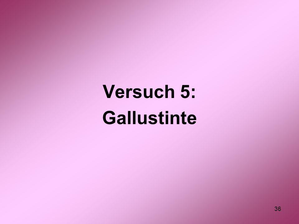 Versuch 5: Gallustinte