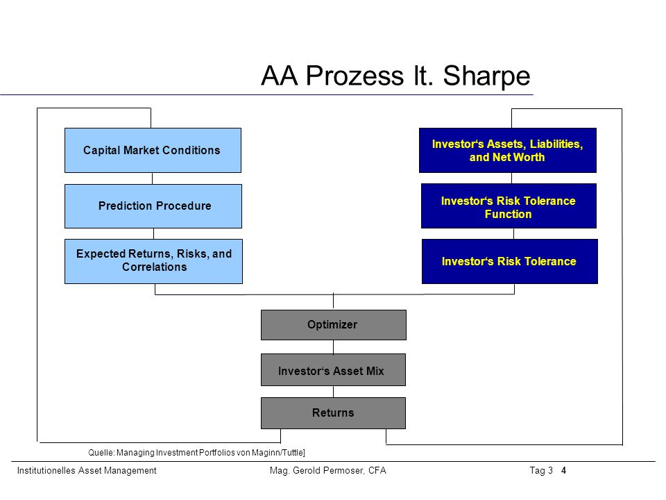 AA Prozess lt. Sharpe Investor's Assets, Liabilities, and Net Worth