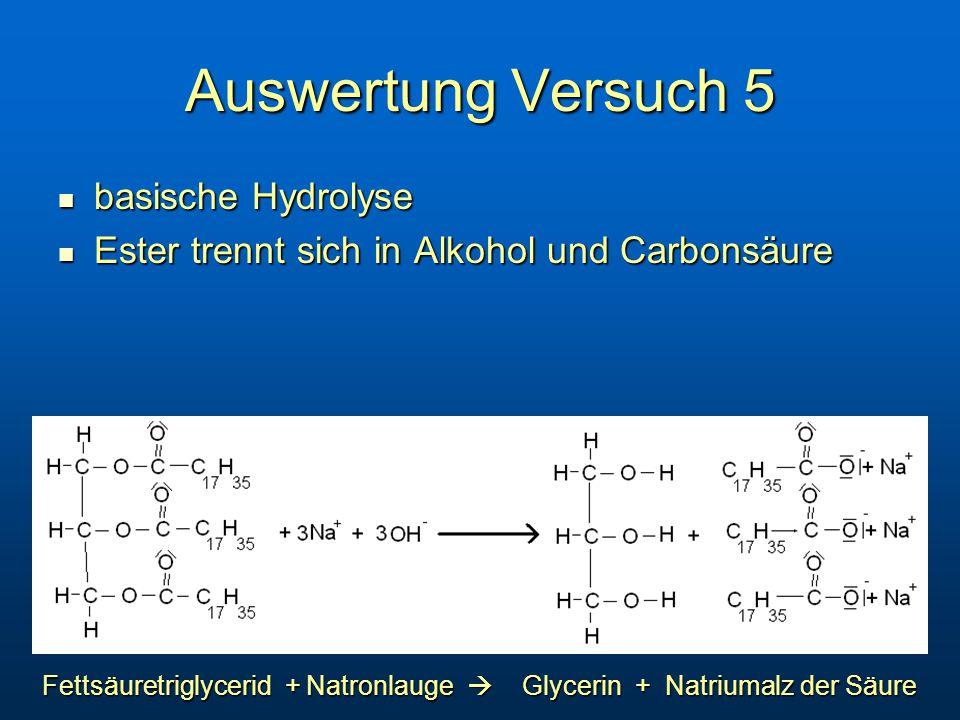 Auswertung Versuch 5 basische Hydrolyse