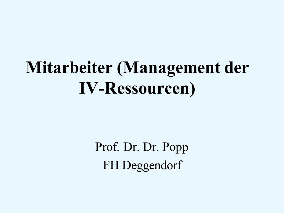Mitarbeiter (Management der IV-Ressourcen)