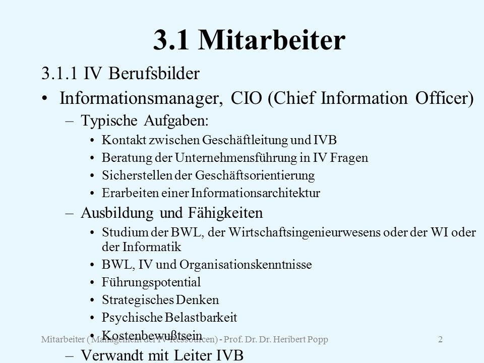 3.1 Mitarbeiter 3.1.1 IV Berufsbilder