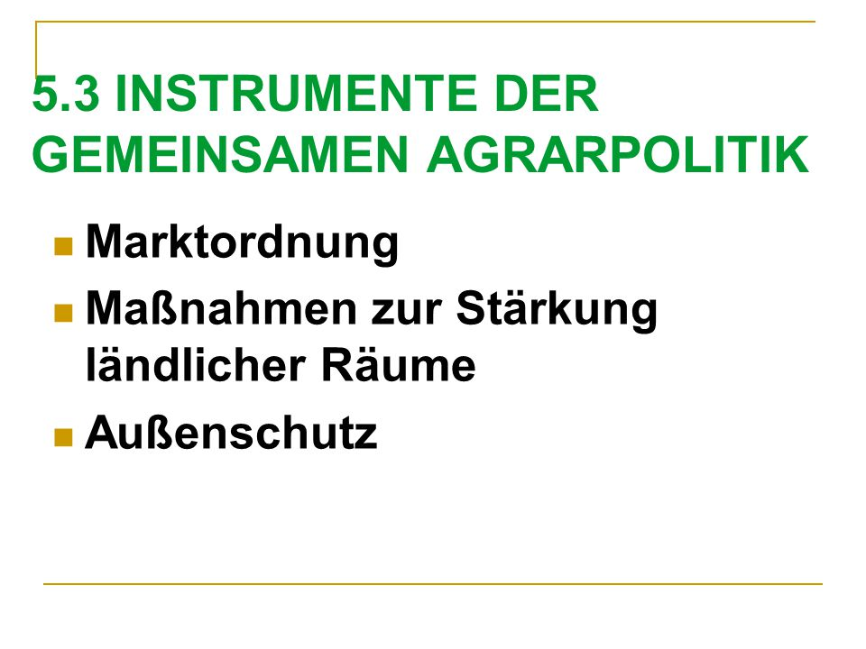 5.3 INSTRUMENTE DER GEMEINSAMEN AGRARPOLITIK