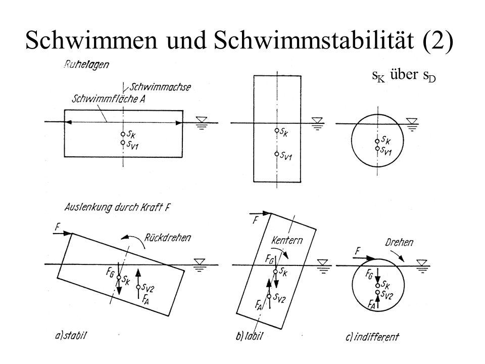 Schwimmen und Schwimmstabilität (2)