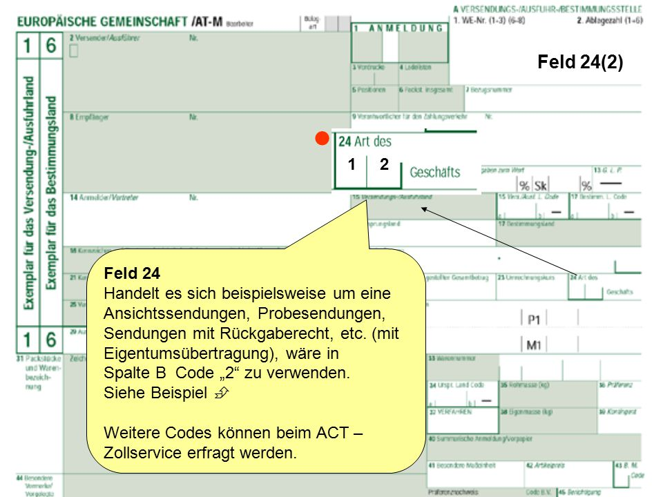 Feld 24(2)  1 2. Feld 24.