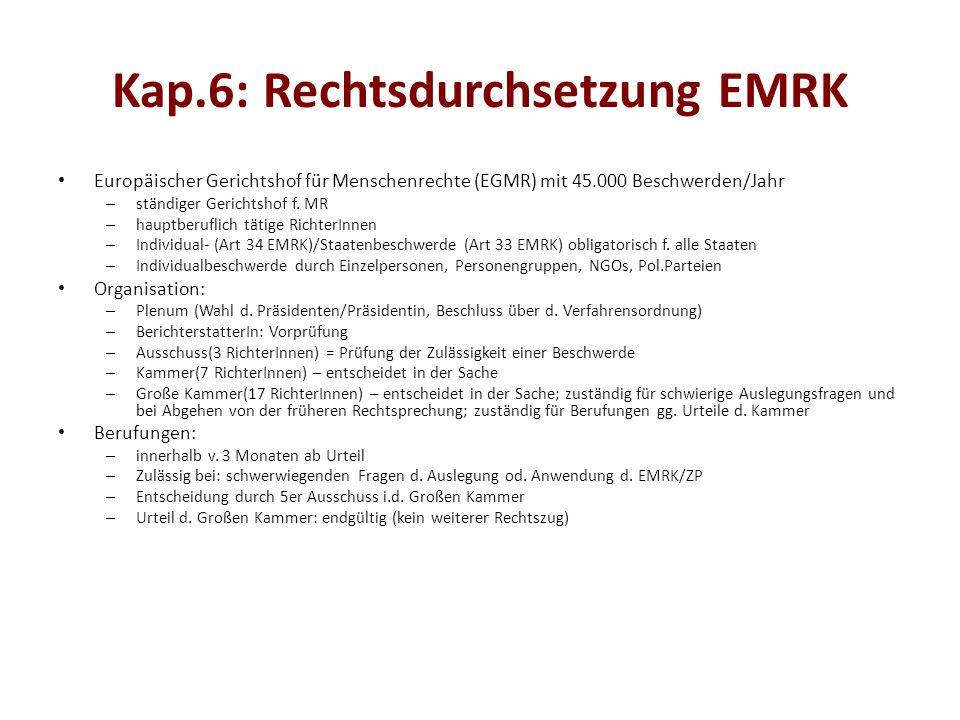 Kap.6: Rechtsdurchsetzung EMRK