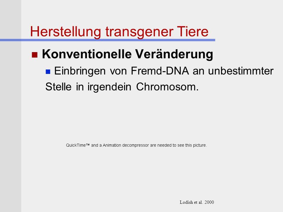 Herstellung transgener Tiere