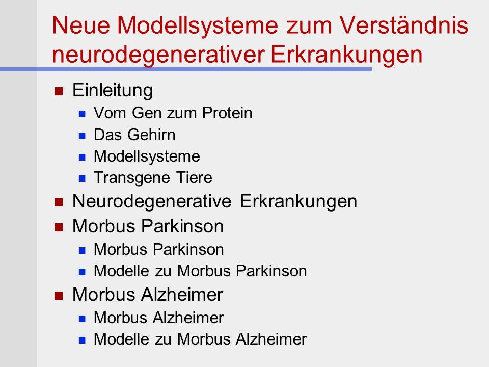 Neue Modellsysteme zum Verständnis neurodegenerativer Erkrankungen