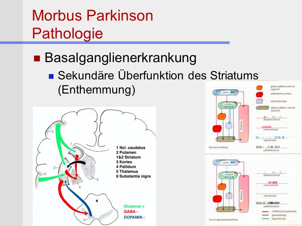 Morbus Parkinson Pathologie