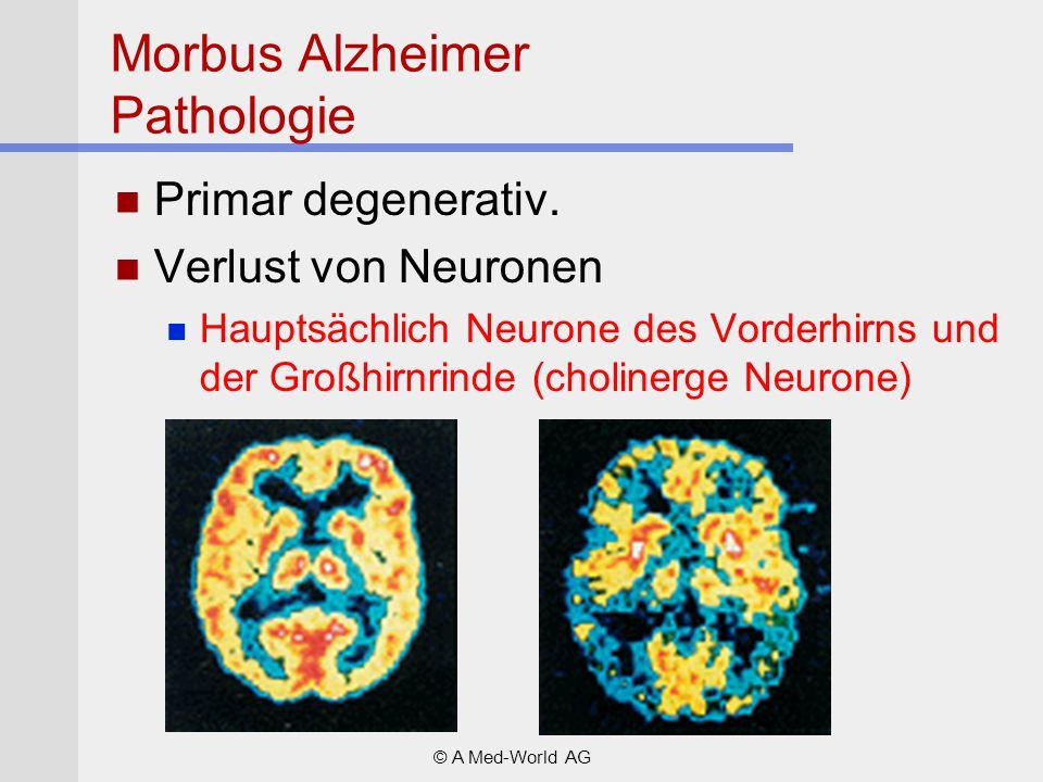 Morbus Alzheimer Pathologie