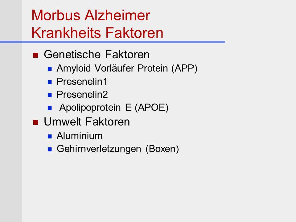 Morbus Alzheimer Krankheits Faktoren