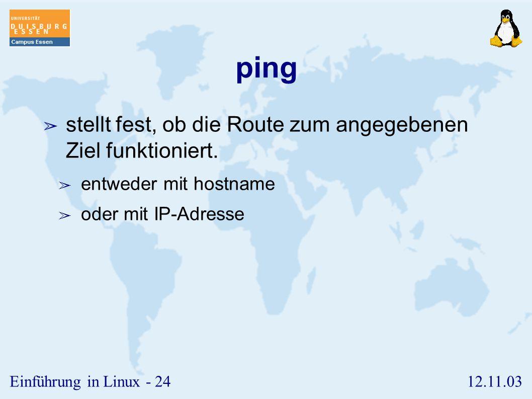 ping stellt fest, ob die Route zum angegebenen Ziel funktioniert.