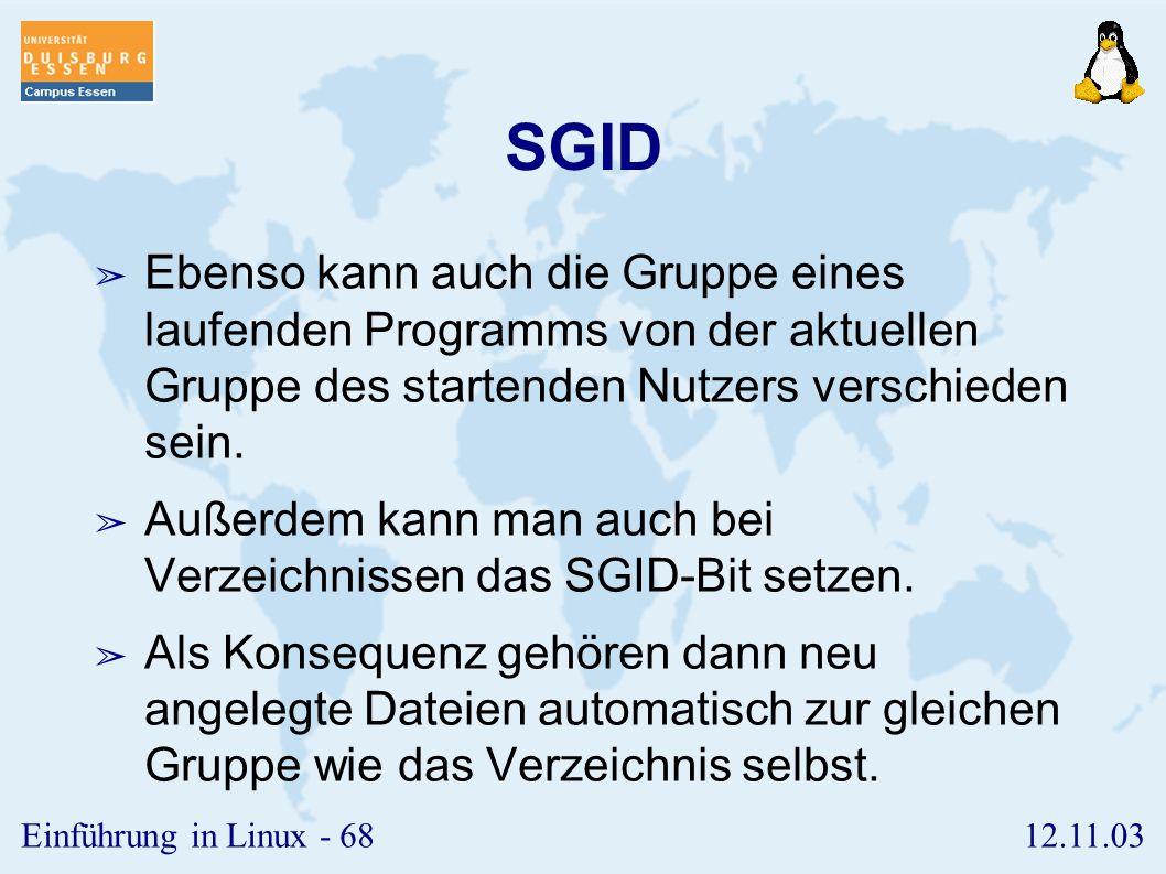 SGID Ebenso kann auch die Gruppe eines laufenden Programms von der aktuellen Gruppe des startenden Nutzers verschieden sein.