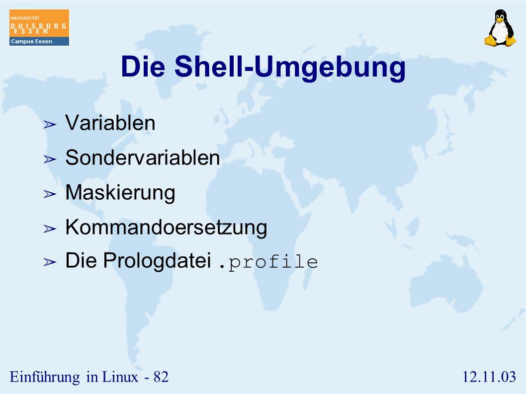 Die Shell-Umgebung Variablen Sondervariablen Maskierung