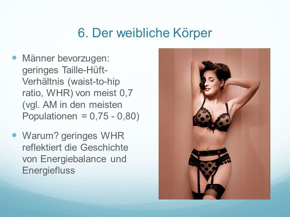 6. Der weibliche Körper