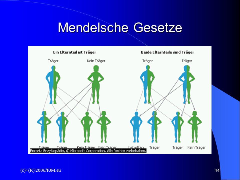 Mendelsche Gesetze (c)+(R) 2006/FJM.eu