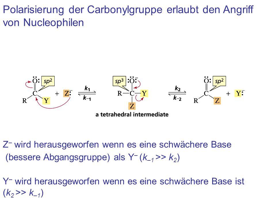 Polarisierung der Carbonylgruppe erlaubt den Angriff von Nucleophilen