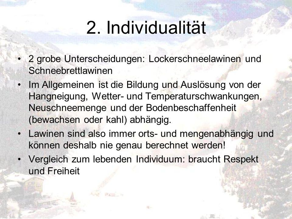 2. Individualität 2 grobe Unterscheidungen: Lockerschneelawinen und Schneebrettlawinen.