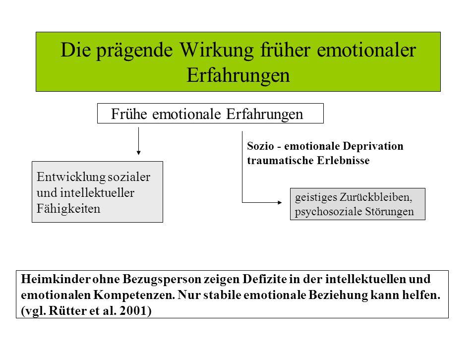 Die prägende Wirkung früher emotionaler Erfahrungen
