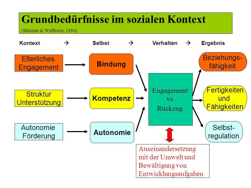 Grundbedürfnisse im sozialen Kontext (Skinner & Wellborn, 1994)