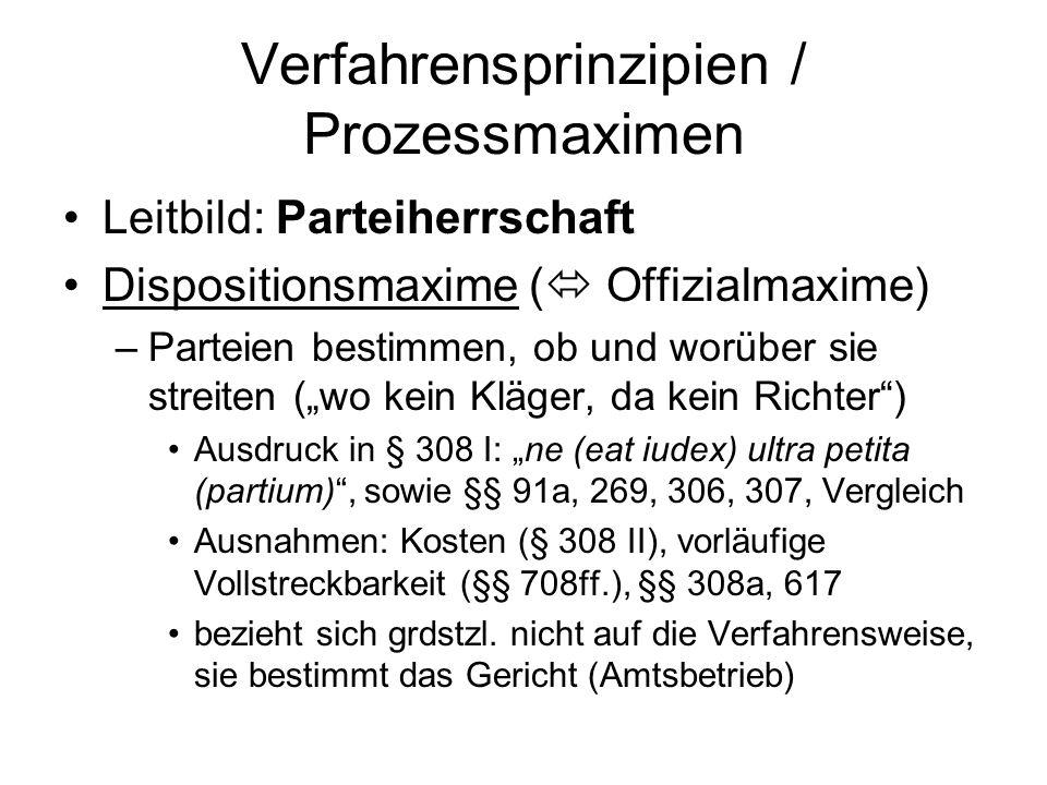 Verfahrensprinzipien / Prozessmaximen