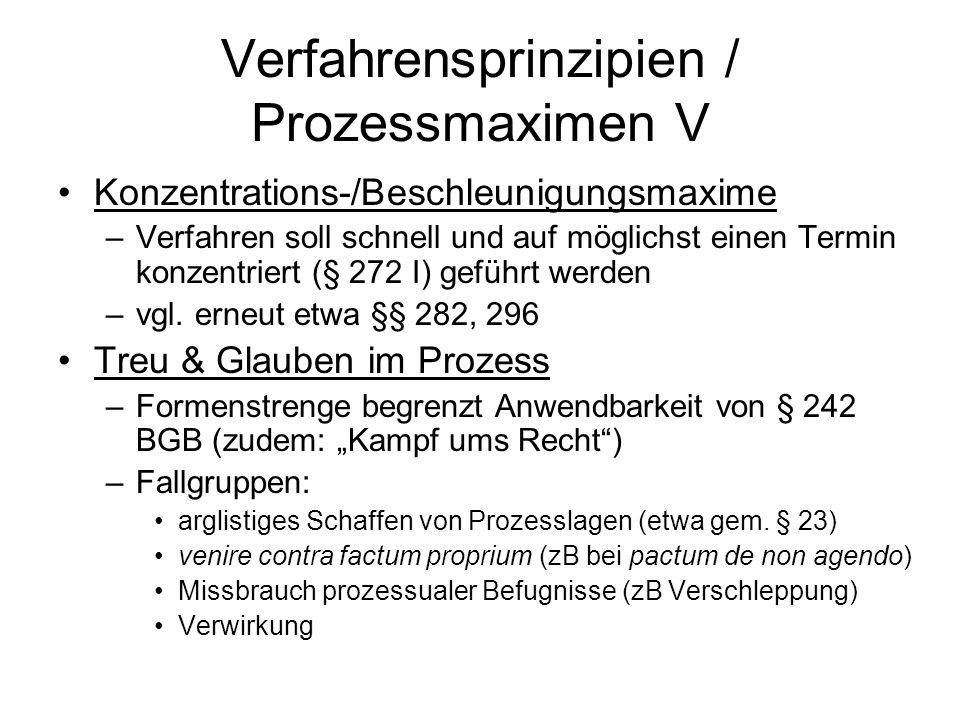 Verfahrensprinzipien / Prozessmaximen V