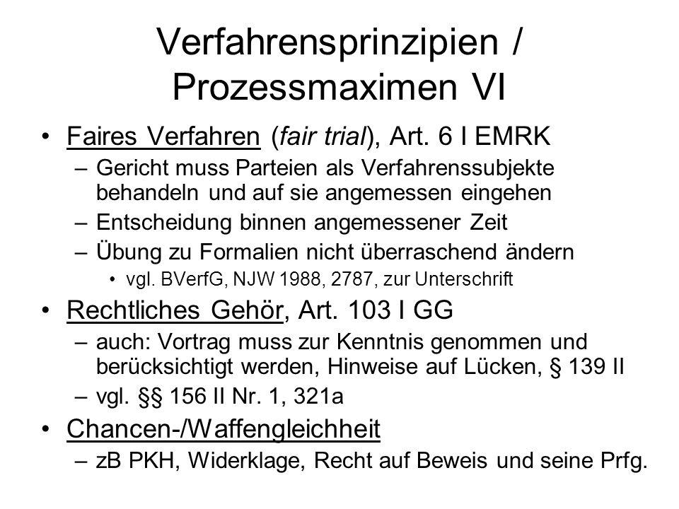 Verfahrensprinzipien / Prozessmaximen VI