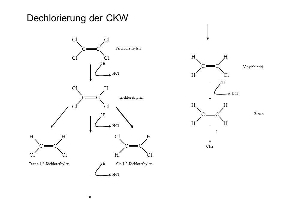 Dechlorierung der CKW Cl C H C Cl Cl H C H C H C Cl Cl H C