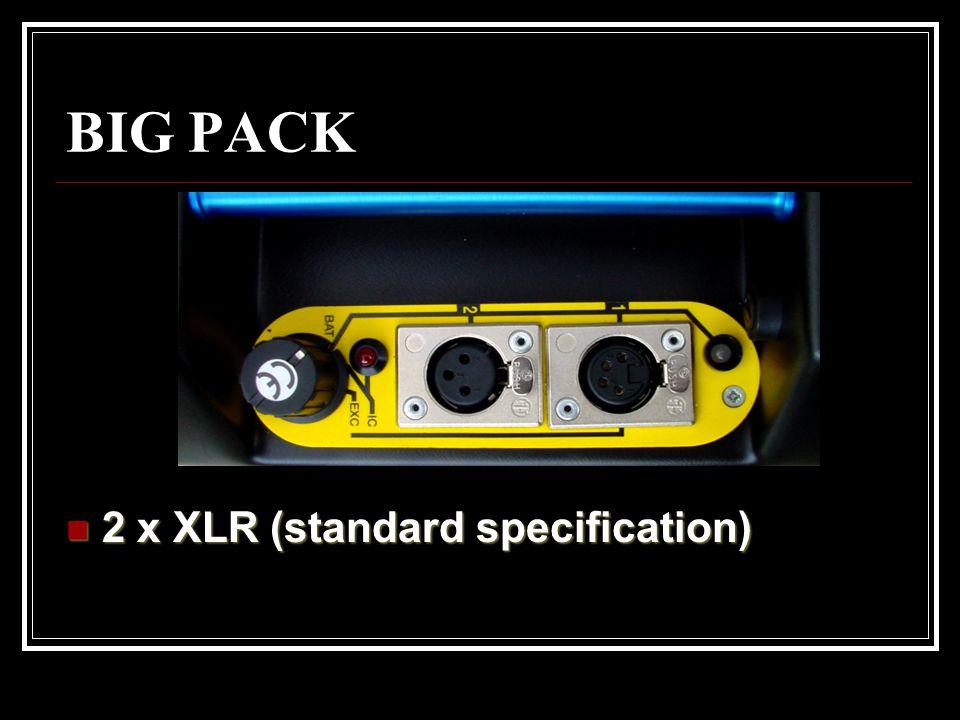 BIG PACK 2 x XLR (standard specification)