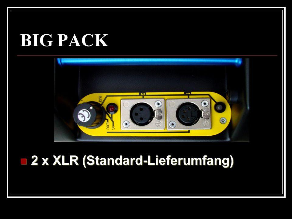BIG PACK 2 x XLR (Standard-Lieferumfang)