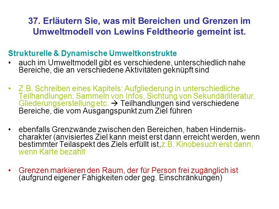 37. Erläutern Sie, was mit Bereichen und Grenzen im Umweltmodell von Lewins Feldtheorie gemeint ist.