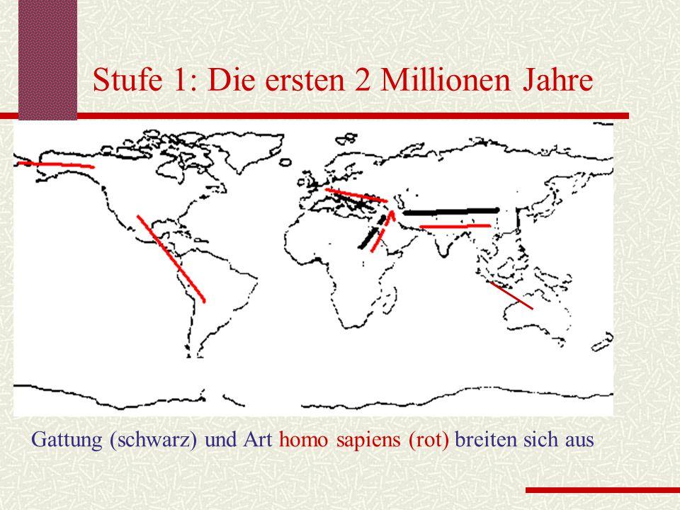 Stufe 1: Die ersten 2 Millionen Jahre