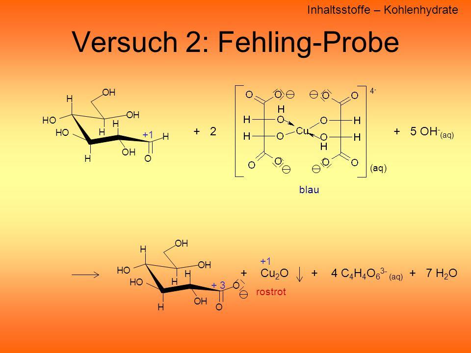 Versuch 2: Fehling-Probe
