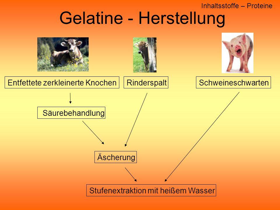 Gelatine - Herstellung