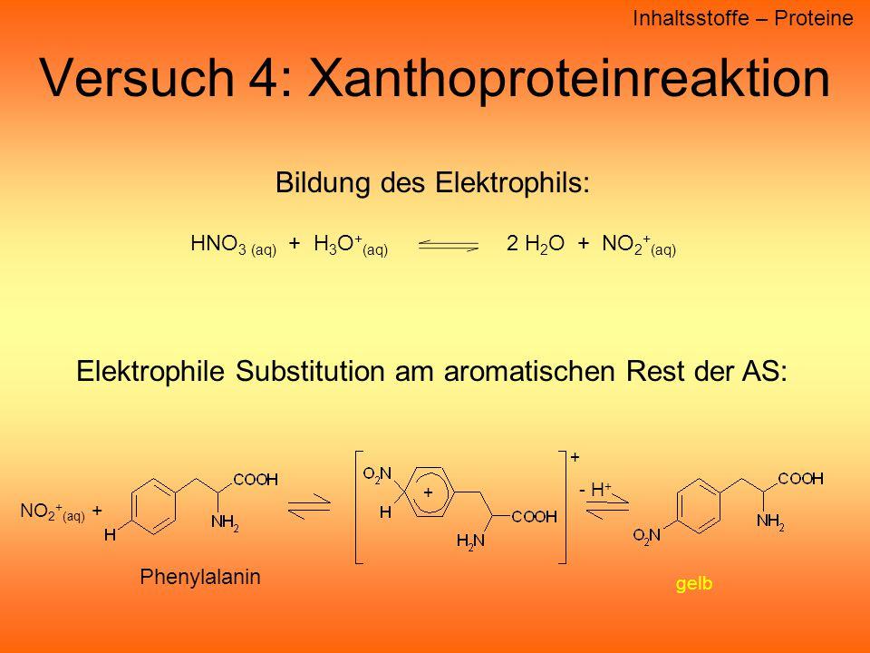Versuch 4: Xanthoproteinreaktion