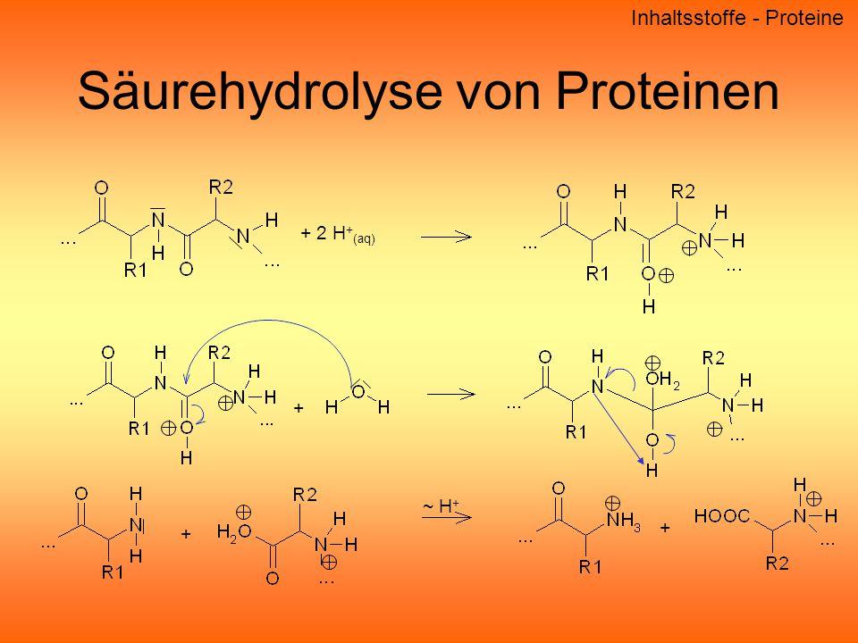 Säurehydrolyse von Proteinen