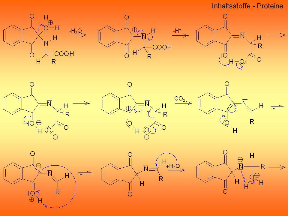 Inhaltsstoffe - Proteine