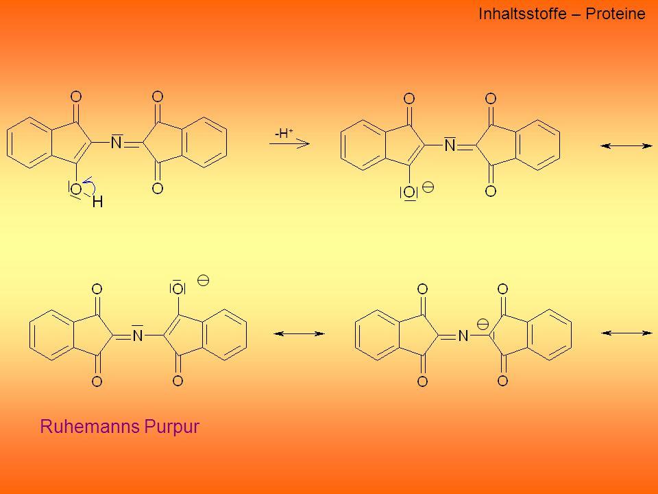 Inhaltsstoffe – Proteine