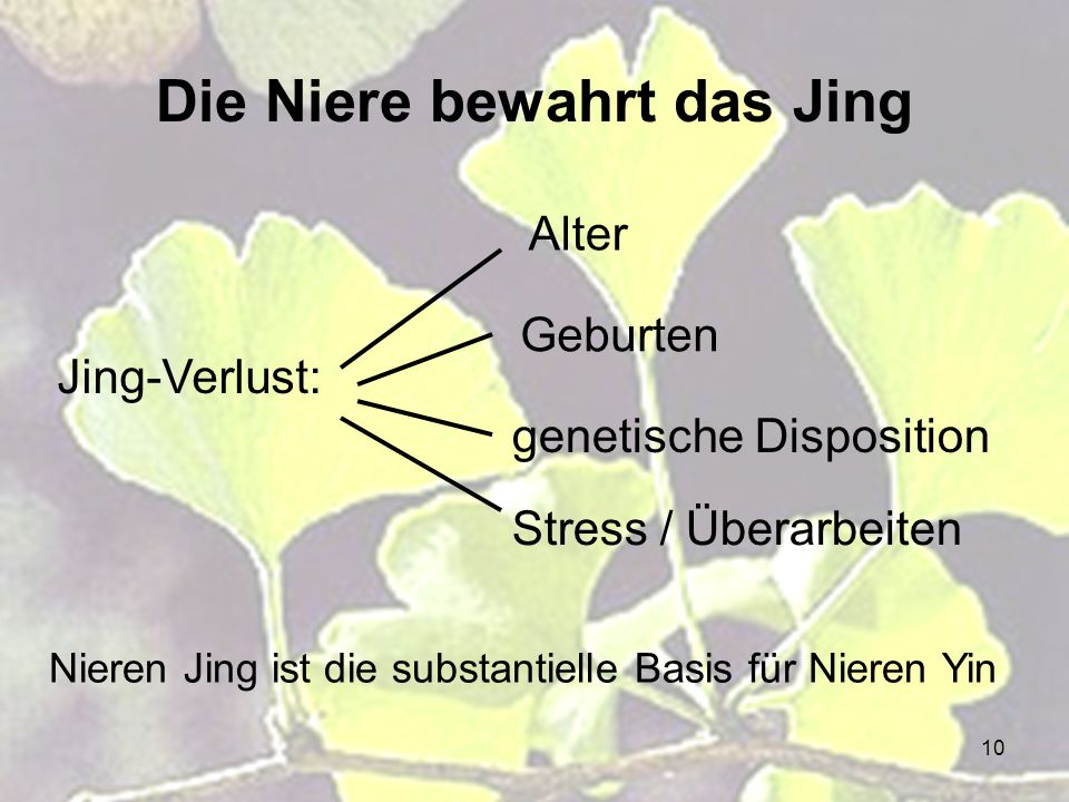 Die Niere bewahrt das Jing