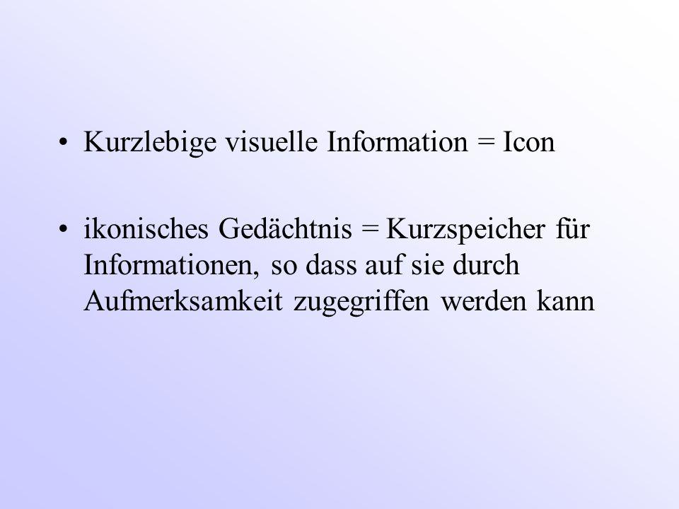 Kurzlebige visuelle Information = Icon
