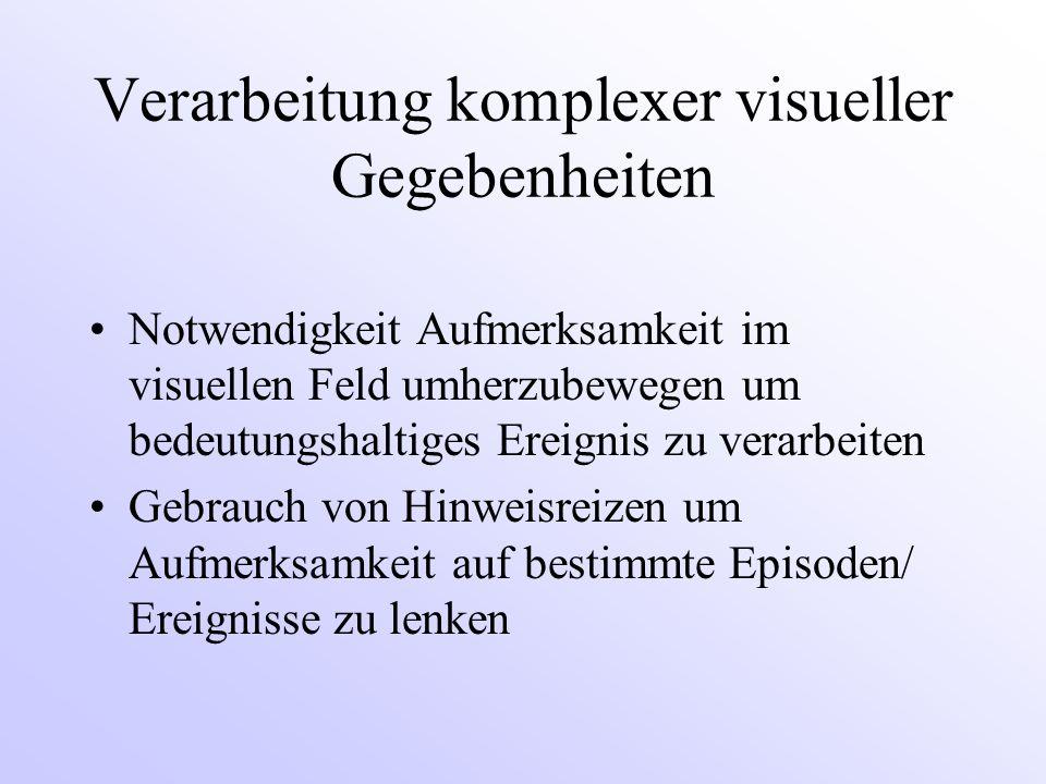 Verarbeitung komplexer visueller Gegebenheiten