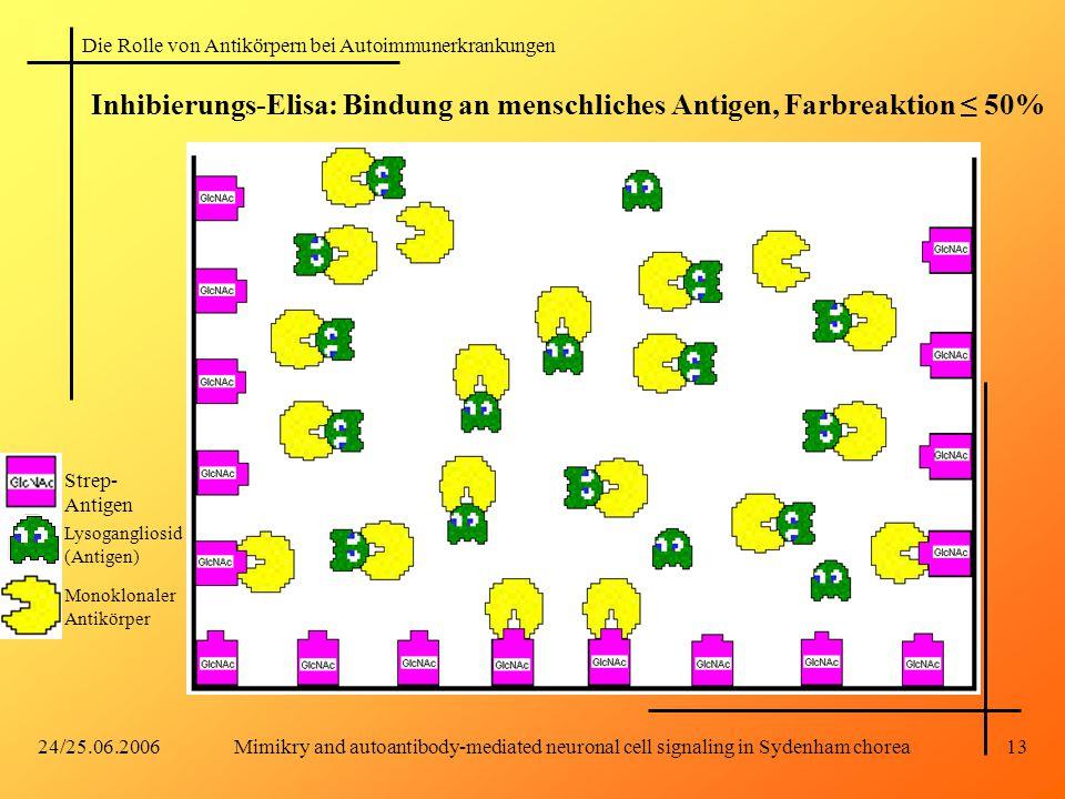 Mimikry and autoantibody-mediated neuronal cell signaling in Sydenham chorea
