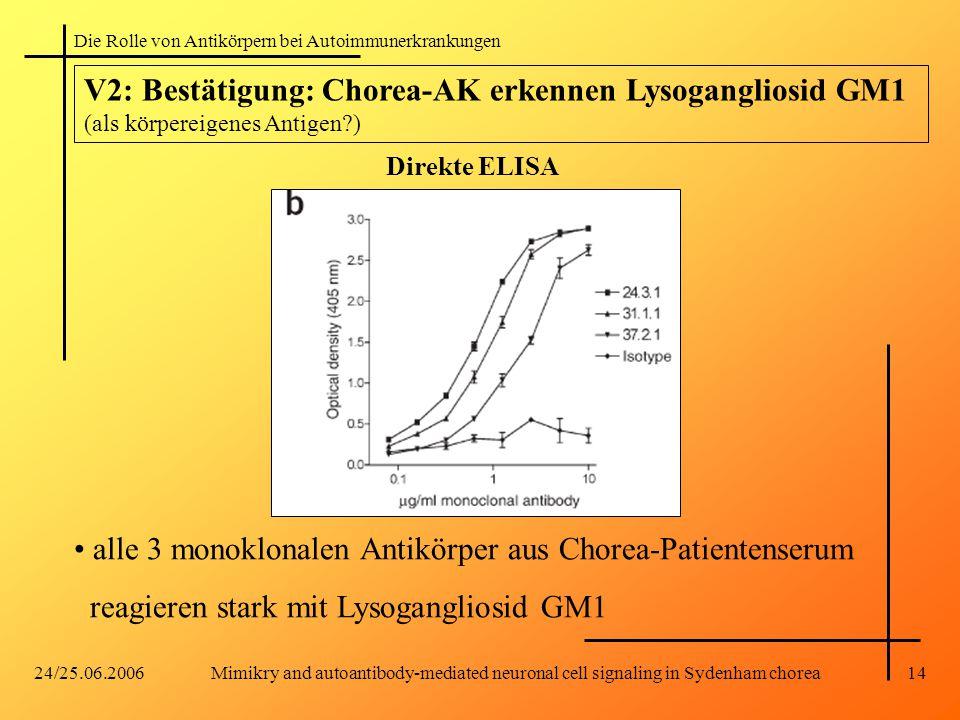 alle 3 monoklonalen Antikörper aus Chorea-Patientenserum
