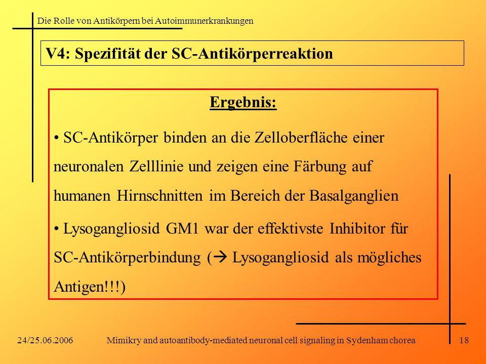 V4: Spezifität der SC-Antikörperreaktion