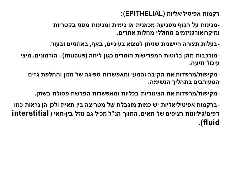 רקמות אפיטיליאליות (EPITHELIAL):