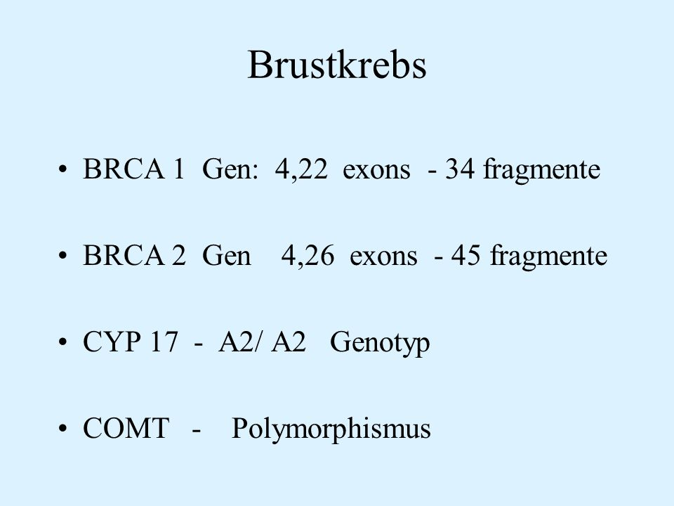 Brustkrebs BRCA 1 Gen: 4,22 exons - 34 fragmente